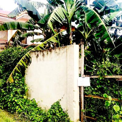 Lagtang Property